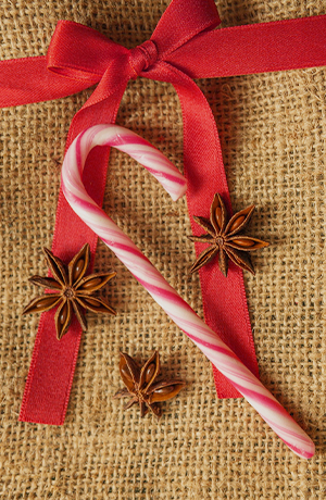 candy cane on top of a bow