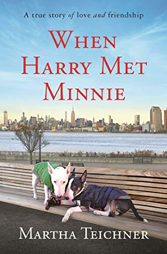 When Harry Met Minnie book cover