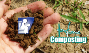 Hand holding composted soil
