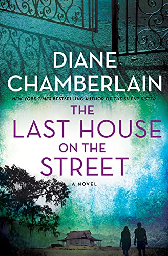 The Last House on the Street book cover