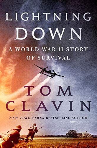 Lightning Down book cover